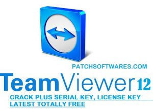 TeamViewer 15.22.3 Crack With Activation Key Free Download