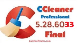 CCleaner Professional 5.39 Crack
